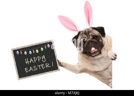Easter bunny pug puppy dog with ears, eggs and blackboard with text happy easter, sideways from white banner - Stock Photo
