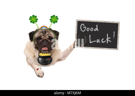 Talisman pug puppy dog, with shamrock clover, golden coins, lady bug and horse shoe for good luck and success, isolated - Stock Photo