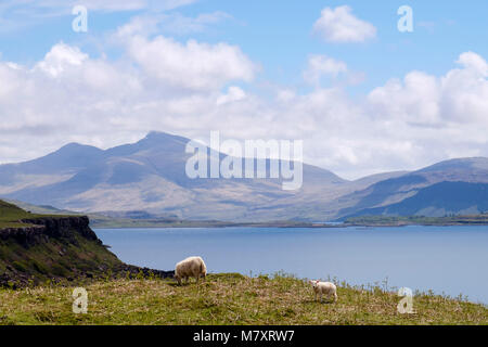 View across across Loch Tuath to Ben More mountain on west coast. Kilninian Isle of Mull Argyll and Bute Inner Hebrides - Stock Photo