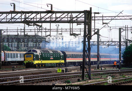 A class 55 deltic diesel locomotive number 55022/D9000 'Royal Scots Grey' working a enthusiast railtour at Willesden - Stock Photo