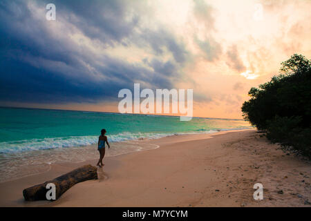 Back side view silhouette of girl walking on a solitary beach at sunset, with a piece of wood in the sand, turquoise - Stock Photo