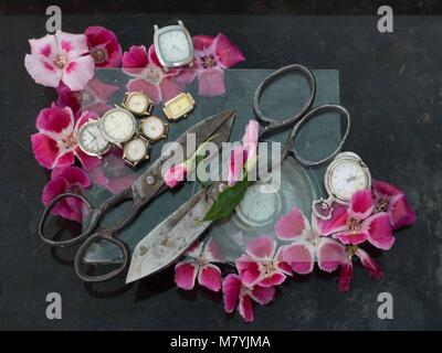 Art still life of two old black metal scissors, red small flowers and numerous wristwatches on a black background. - Stock Photo