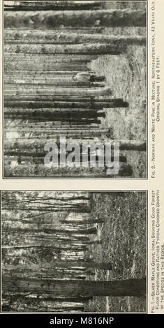 Bulletin of the U.S. Department of Agriculture (1913) (20313302949) - Stock Photo