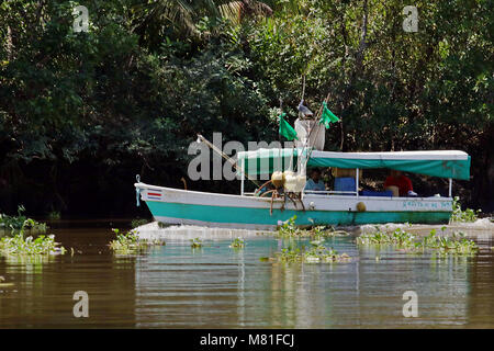 Small fishing boat traveling up the Rio Sierpe in Puntarenas Province, Costa Rica. - Stock Photo