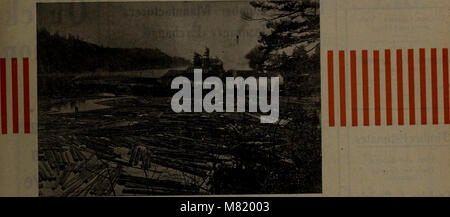 Canadian forest industries July-December 1920 (1920) (20344887059) - Stock Photo