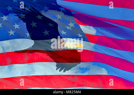 American Bald Eagle in flight and the Flag of the United States of America composite over clouds - Stock Photo