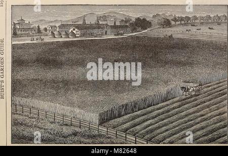 Buist's garden guide and almanac - 1898 (1898) (19948401744) - Stock Photo