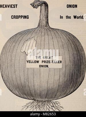 Buist's garden guide and almanac - 1898 (1898) (20544498316) - Stock Photo