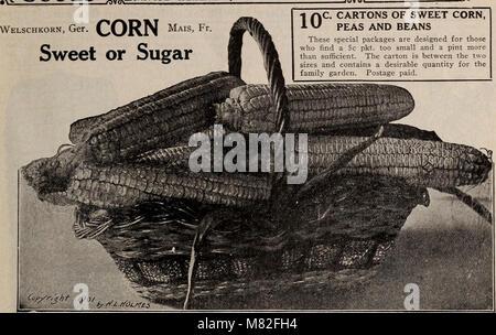 Catalogue 1913 - seeds, bulbs, shrubs (1913) (20390515429) - Stock Photo
