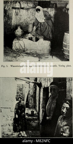 Centralblatt für Bakteriologie, Parasitenkunde und Infektionskrankheiten (1913) (20588202655) - Stock Photo