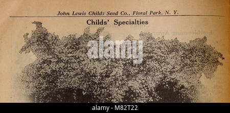 Childs' fall catalog - no sale complete until our customer is satisfied (1929) (20417957058) - Stock Photo