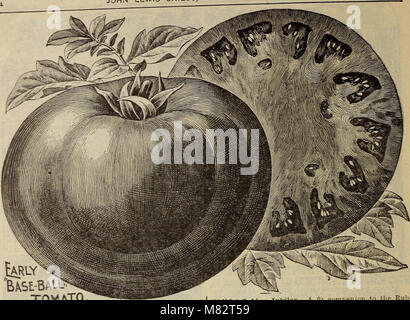 Childs' rare flowers, fruits and vegetables (1914) (20581798546) - Stock Photo