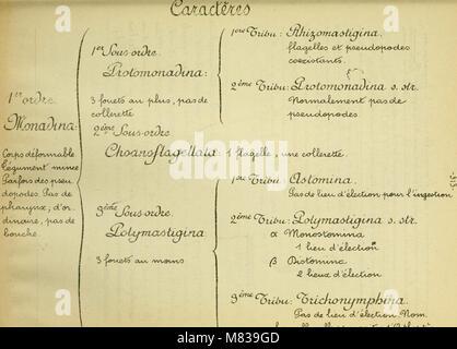 Confnces de zoologie faites a Sorbonne (1914) (20687916841) - Stock Photo
