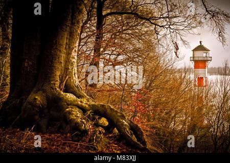 Deutschland, Hamburg, Rissen, Elbe, Wald, Baum, Leuchttturm - Stock Photo