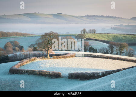 Frost covered countryside near Crediton, Mid Devon, England. Winter (January) 2018. - Stock Photo
