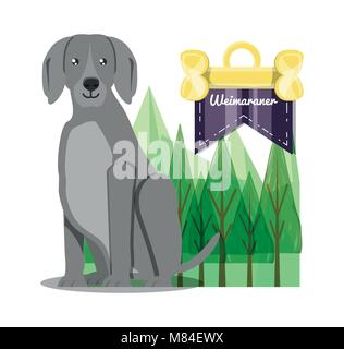 weimaraner dog icon over background, colorful design vector illustration - Stock Photo