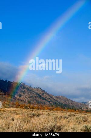 Honey Lake Valley rainbow, Lassen County, California