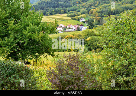 An elevated view, in late summer, of the leafy tree covered landscape near Riquewihr in Alsace, France. - Stock Photo