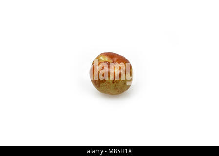 Jujube fruit, Chinese date centered and isolated on white background - Stock Photo