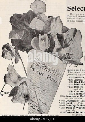 Dreer's 1907 garden book (1907) (20810852170) - Stock Photo