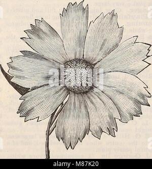 Dreer's quarterly wholesale price list - seeds plants bulbs tools fertilizers sundries &c (1897) (20427492764) - Stock Photo