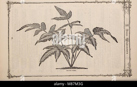 E. Fred Washburn's amateur cultivator's guide to the flower and kitchen garden for 1880 (1880) (20568845774) - Stock Photo