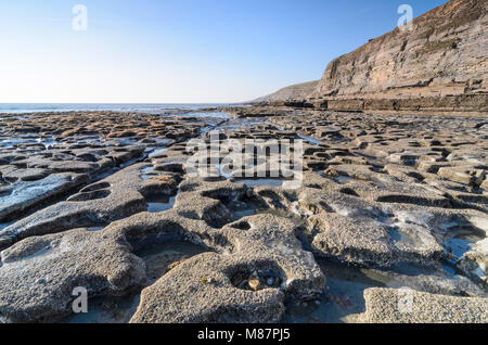 Seaweed contrasting with the rocky shoreline of Dunraven Bay in Southerndown, South Wales - Stock Photo