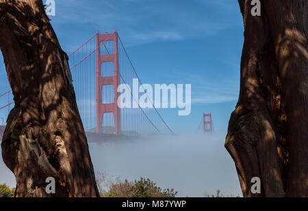 Thick low fog formed under the Golden Gate Bridge in San Francisco, California, United States, on an early spring - Stock Photo