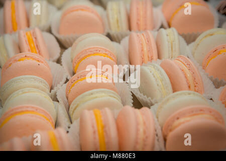 closeup assorted white and pink macaroons with yellow and white filling rowed on tray - Stock Photo
