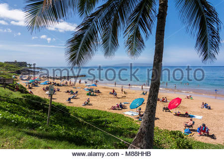 Palm tree and people on Kamaole Beach Park 3 in Kihei on the island of Maui in the state of Hawaii USA - Stock Photo