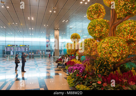 Photo Garden in Terminal 2, Singapore Changi Airport, Changi, Singapore Island, Singapore - Stock Photo