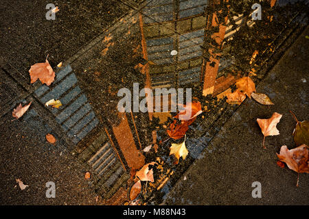 WA13862-00...WASHINGTON - SafeCo Field building reflected in a puddle on the sidewalk in the Sodo District of Seattle. - Stock Photo