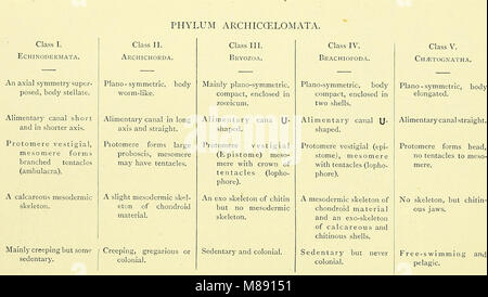 Elementary text-book of zoology (electronic resource) (1901) (20164913898) - Stock Photo