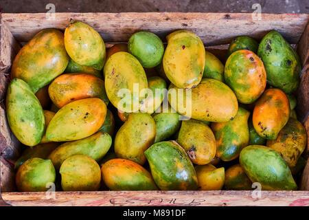 Kenya, Lamu island, Lamu town, Unesco world heritage, the market - Stock Photo
