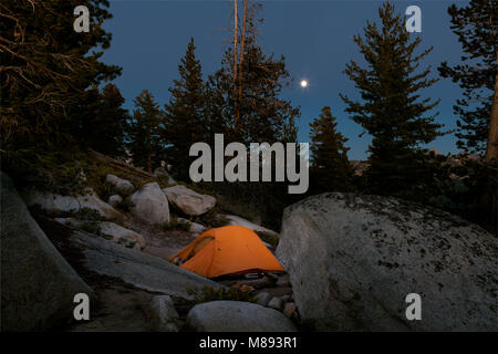 CA02873-00...CALIFORNIA -  Moon rise over campsite below Clouds Rest in Yosemite National Park. - Stock Photo