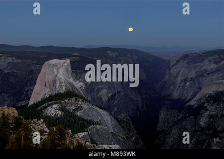CA02874-00...CALIFORNIA - Moon setting as the sun rises with a view of Half Dome and Yosemite Valley from Clouds - Stock Photo