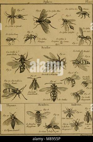 Encyclopédie méthodique - Histoire naturelle (1789) (14597354210) - Stock Photo