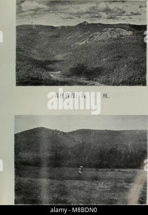 Da xing an ling sen lin zi yuan diao cha bao gao (1954) (20848416711) - Stock Photo
