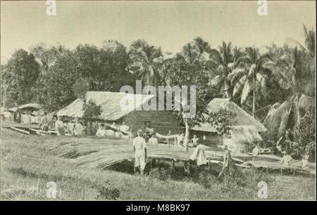 Der Tropenpflanzer; zeitschrift fr tropische landwirtschaft (20676328950) - Stock Photo