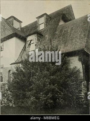Descriptive catalogue - ornamental trees, shrubs, vines, evergreens, hardy perennials and fruits (1902) (20572112991) - Stock Photo