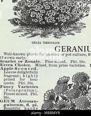 Descriptive catalogue of vegetable, flower, and farm seeds (18uu) (20685224889) - Stock Photo