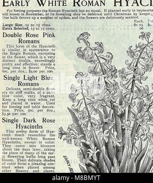 Descriptive catalogue of vegetable, flower, and farm seeds (18uu) (20862216842) - Stock Photo