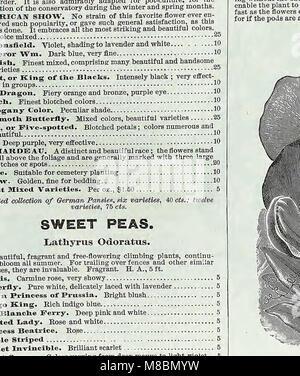 Descriptive catalogue of vegetable, flower, and farm seeds (18uu) (20862863332) - Stock Photo