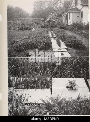 Development and activities of roots of crop plants; a study in crop ecology (1922) (20268095554) - Stock Photo
