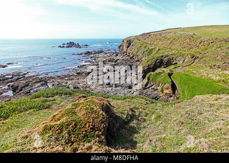 The South West Coast Path near to Pistil Meadow on the Lizard Peninsula, Cornwall, South West England, UK - Stock Photo