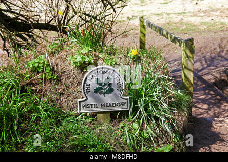 A National Trust omega sign saying 'Pistil Meadow' on the Lizard Peninsula, Cornwall, South West England, UK PHOTO - Stock Photo