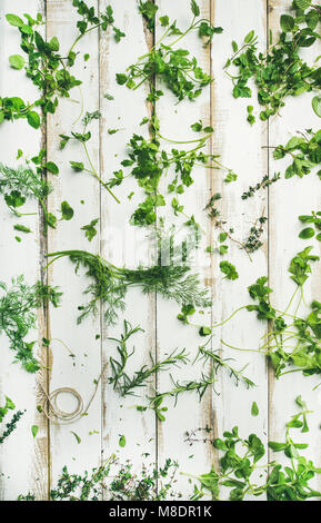 Various fresh green kitchen herbs for healthy cooking - Stock Photo