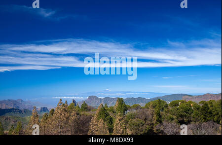 Gran Canaria, March 2018,  view over pine trees burned in wildfire to Teide on Tenerife - Stock Photo