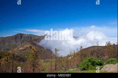 Gran Canaria, March 2018,  view over an area affected by wildfire towards small valley filled with clouds - Stock Photo