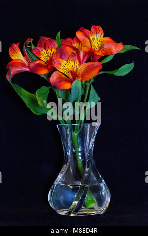 A beautiful small bouquet of orange and yellow flowers in a crystal vase on a black background. - Stock Photo